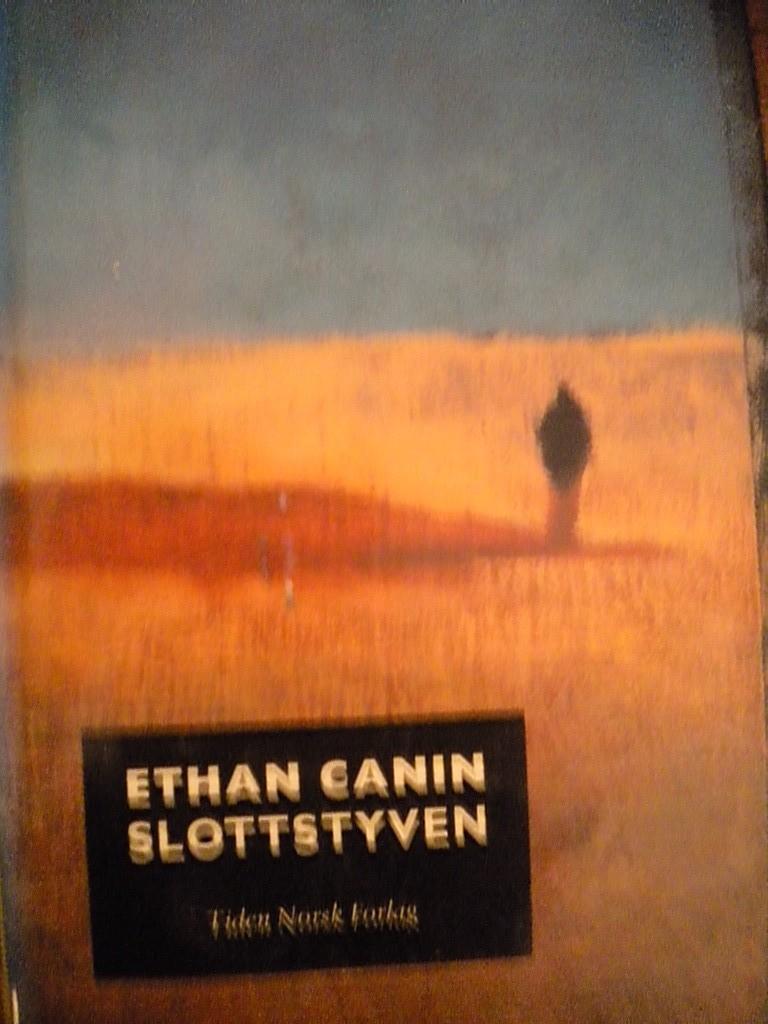 1ab7d30a9 Slottstyven (Ethan Canin)